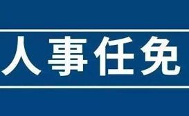 title='任命副秘书长(人事任免)'
